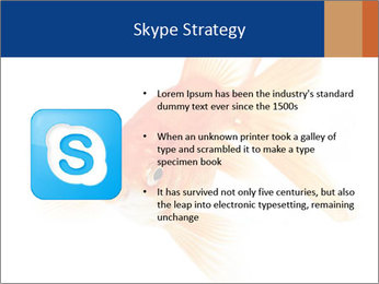 0000075349 PowerPoint Template - Slide 8