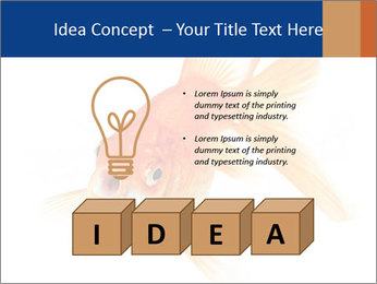0000075349 PowerPoint Template - Slide 80