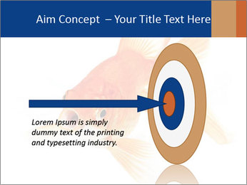 0000075349 PowerPoint Template - Slide 83