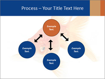 0000075349 PowerPoint Template - Slide 91