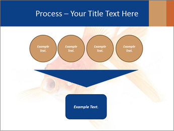 0000075349 PowerPoint Template - Slide 93