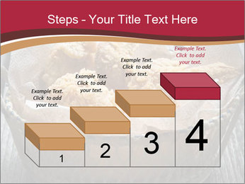 0000075360 PowerPoint Templates - Slide 64