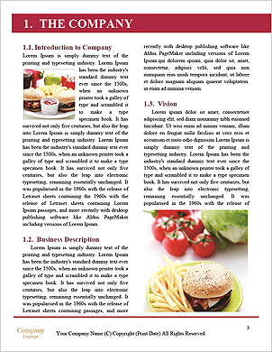 0000075360 Word Template - Page 3