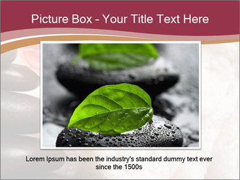 0000075363 PowerPoint Template - Slide 15