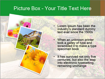 0000075364 PowerPoint Template - Slide 17