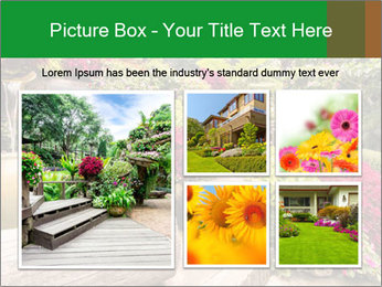 0000075364 PowerPoint Template - Slide 19