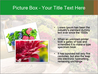 0000075364 PowerPoint Template - Slide 20