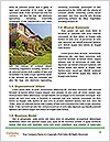 0000075364 Word Template - Page 4