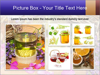 0000075366 PowerPoint Template - Slide 19