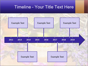 0000075366 PowerPoint Template - Slide 28