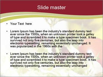 0000075369 PowerPoint Template - Slide 2