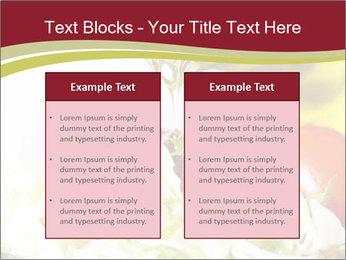 0000075369 PowerPoint Template - Slide 57