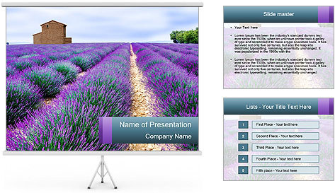 0000075374 PowerPoint Template