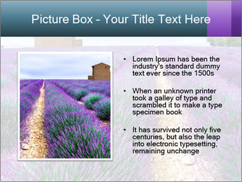 0000075374 PowerPoint Template - Slide 13