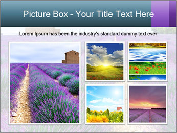 0000075374 PowerPoint Template - Slide 19