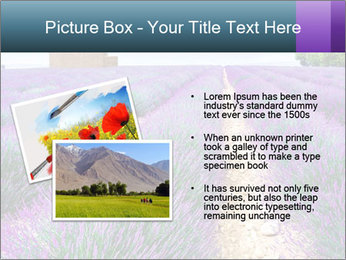 0000075374 PowerPoint Template - Slide 20