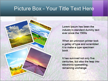 0000075374 PowerPoint Template - Slide 23