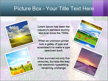 0000075374 PowerPoint Template - Slide 24