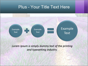 0000075374 PowerPoint Template - Slide 75