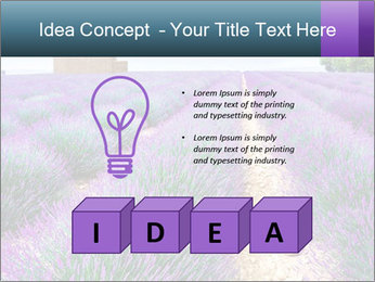 0000075374 PowerPoint Templates - Slide 80