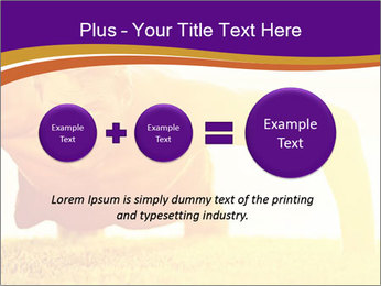 0000075377 PowerPoint Template - Slide 75