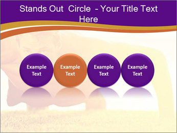 0000075377 PowerPoint Template - Slide 76