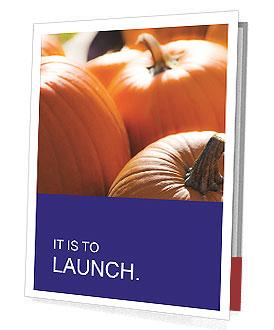 0000075393 Presentation Folder