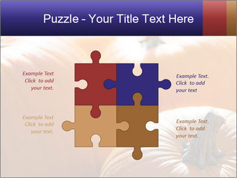 0000075393 PowerPoint Templates - Slide 43