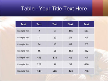 0000075393 PowerPoint Templates - Slide 55