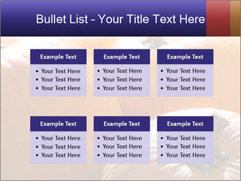 0000075393 PowerPoint Templates - Slide 56