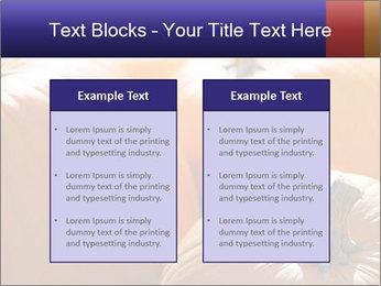 0000075393 PowerPoint Template - Slide 57