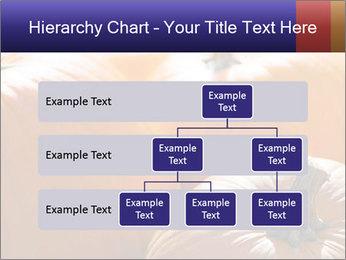0000075393 PowerPoint Template - Slide 67