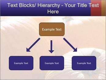 0000075393 PowerPoint Template - Slide 69