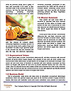 0000075393 Word Templates - Page 4