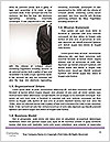 0000075408 Word Template - Page 4