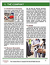 0000075414 Word Template - Page 3
