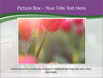 0000075417 PowerPoint Template - Slide 15