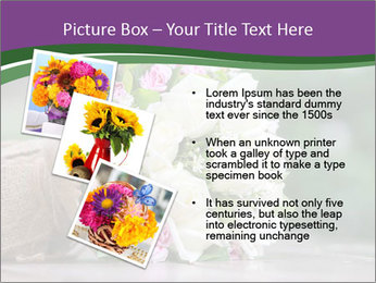 0000075417 PowerPoint Template - Slide 17