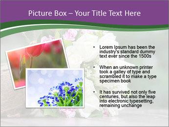 0000075417 PowerPoint Template - Slide 20