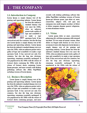 0000075417 Word Template - Page 3