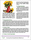 0000075417 Word Templates - Page 4