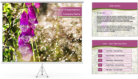 0000075421 PowerPoint Template