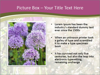 0000075421 PowerPoint Template - Slide 13