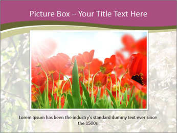 0000075421 PowerPoint Template - Slide 15