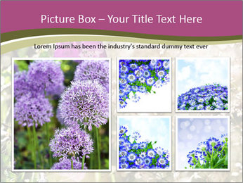 0000075421 PowerPoint Template - Slide 19