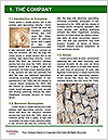 0000075422 Word Template - Page 3