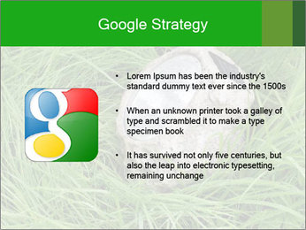 0000075424 PowerPoint Template - Slide 10