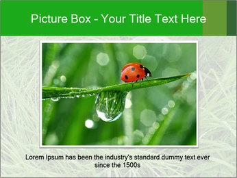 0000075424 PowerPoint Template - Slide 15