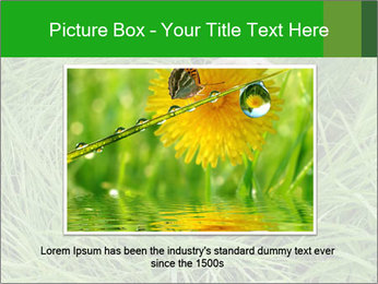0000075424 PowerPoint Template - Slide 16