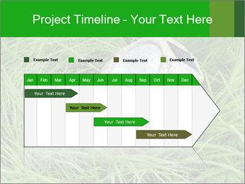 0000075424 PowerPoint Template - Slide 25